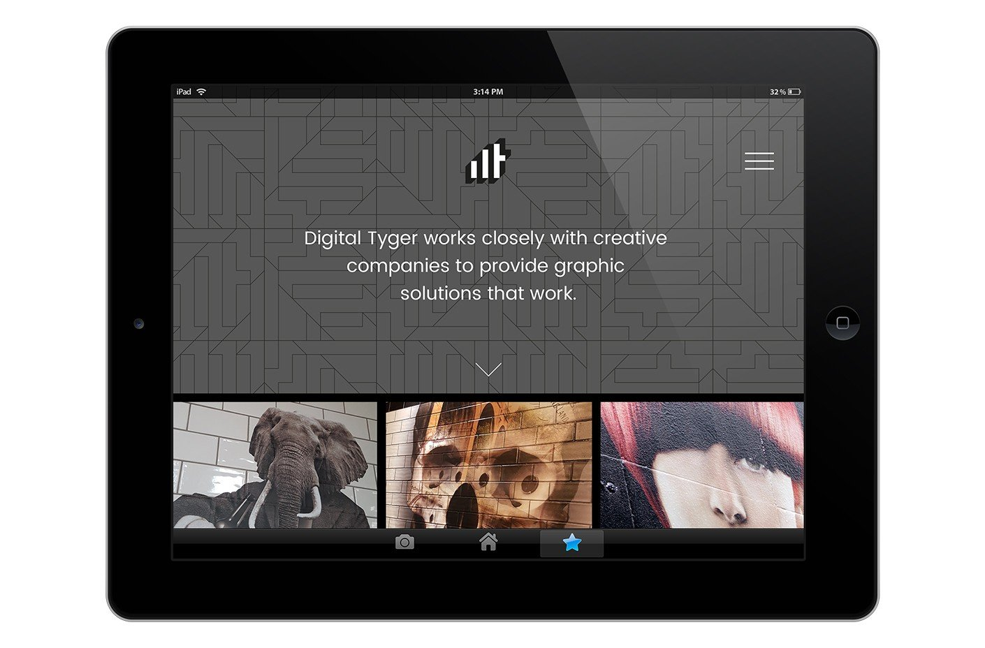Digital Tyger website homepage design